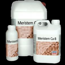 Меристем Са-В (Meristem Ca-B) 1л
